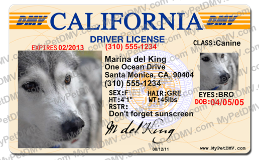 RESCUED! Is My Favorite Breed  Pet Search Page - California